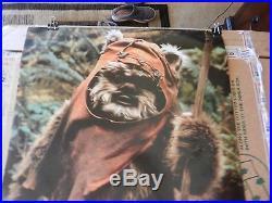 Star Wars Return of The Jedi Wicket The Ewok Movie Poster Print 1983 24 x 35