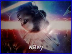 Star Wars Rise of Skywalker 4 ft x 6 ft Original Doublesided Movie Bus Shelter