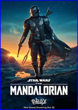 Star Wars The Mandalorian D/S Original Poster